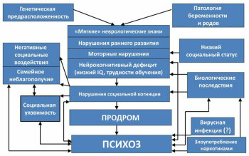 Биопсихосоциальная модель психоза